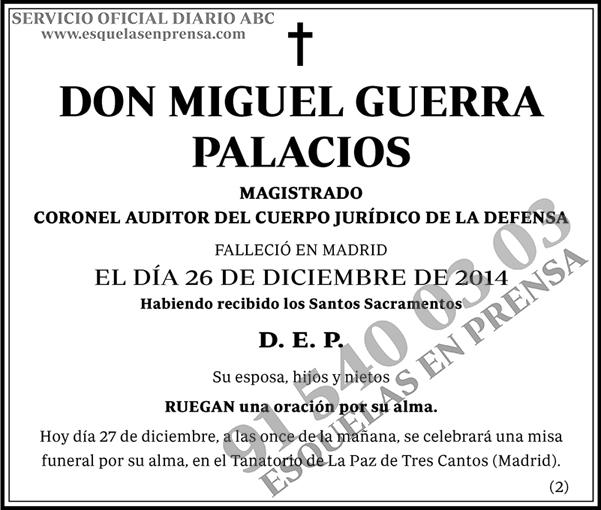 Miguel Guerra Palacios